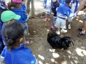 aprender a respetar y cuidar la naturaleza