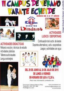 cartel campus karate echeyde 2015