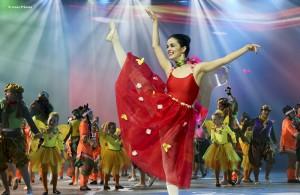 festival coreográfico carnaval santa cruz de tenerife