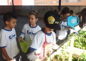 Aprendizaje vivencial y socializador: El Huerto Escolar