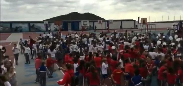 paz 2017